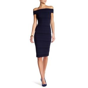NWT Ted Baker London Inan Textured Stripe Dress
